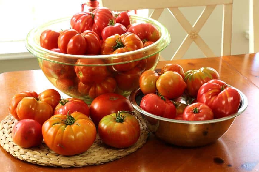 jardin-potager-de-la-confession-du-gourmet-38