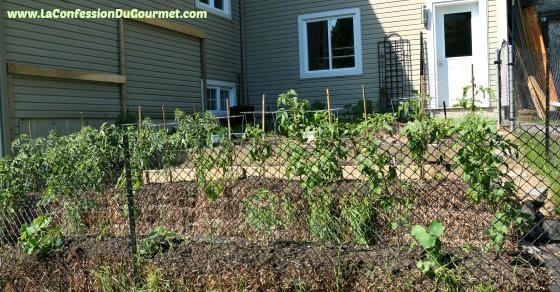 Jardin potager de la Confession du Gourmet 8